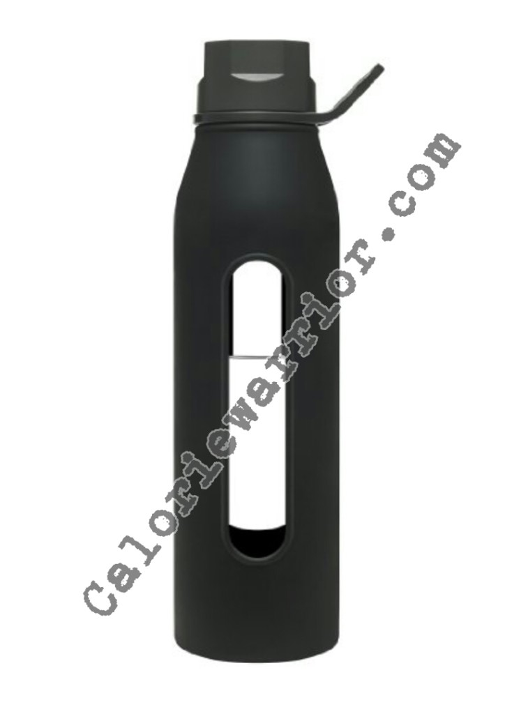 Takeya Glass Water Bottle